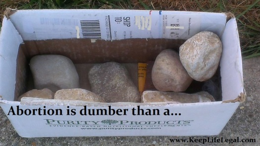 box of rocks1